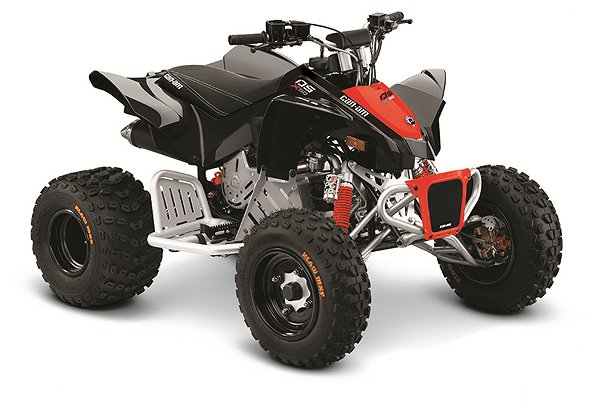 Can-Am DS 90™ X