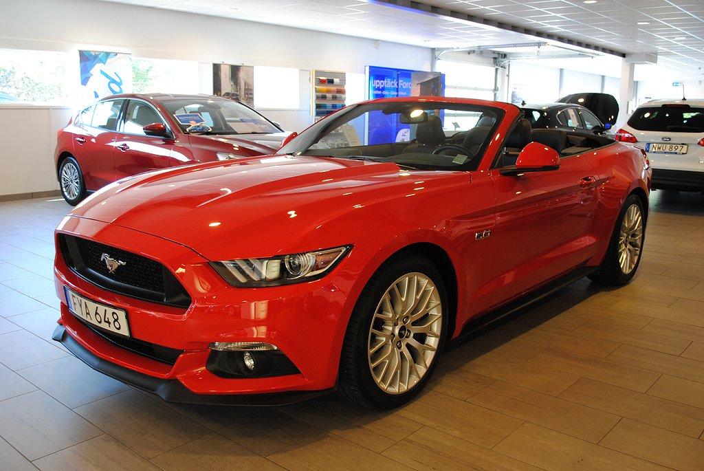 Mustang Kalmar