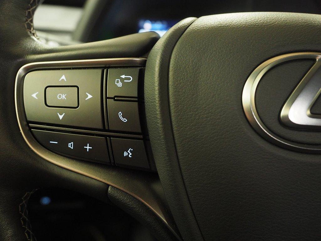 Lexus UX 250h E-Four Automat Leasebar AWD 180hk 2019