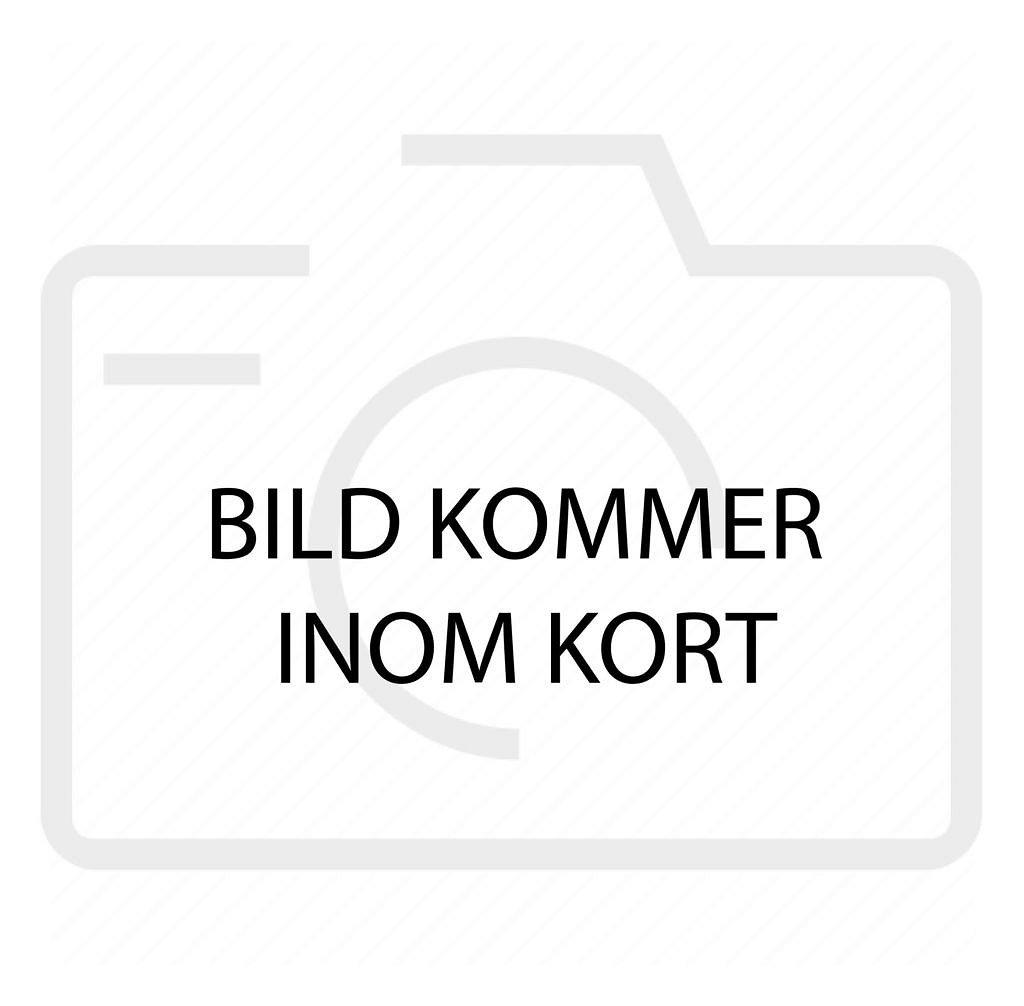 Seat Arona 1.0 TSI DSG Sekventiell Euro 6 115hk