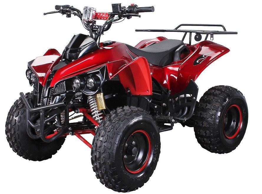 """Övriga ATV """"Midi"""" storlek Rex, 1000W"""
