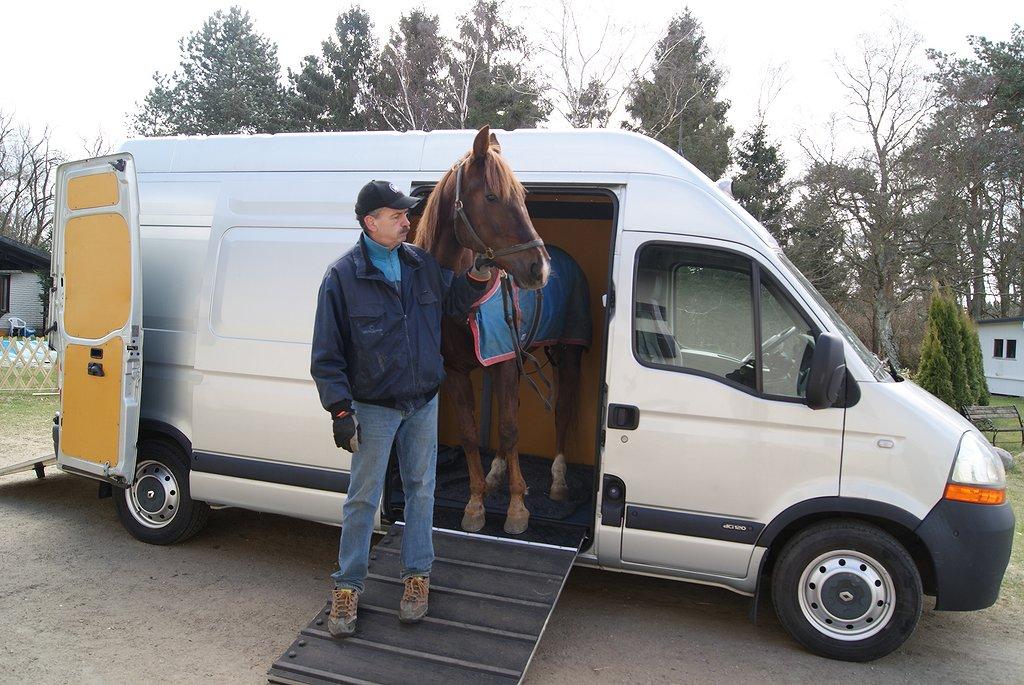 Renault master hästbil b-kort hästlastbil