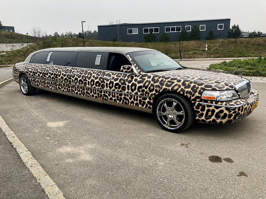 Lincoln Town Car Limo 8 meter Leoparden